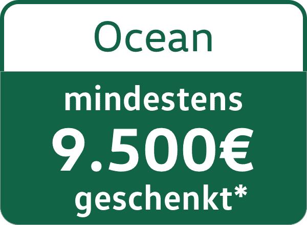 VW California Ocean 9500€ Messerebatte